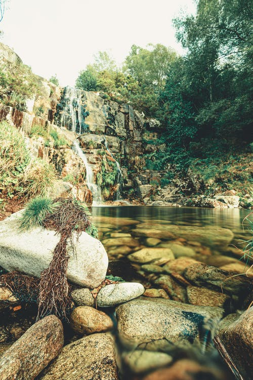 Boulders on coast of mountain river surrounded by trees in daytime