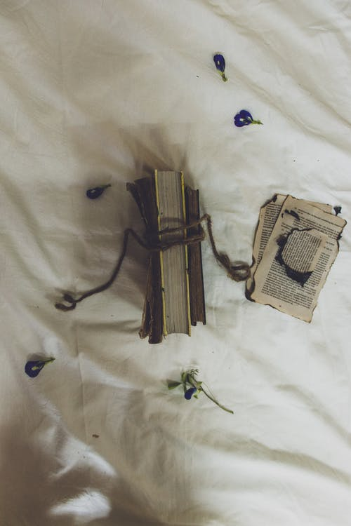 From above of aged textbook tied with rope near flower petals and torn pages on crumpled blanket