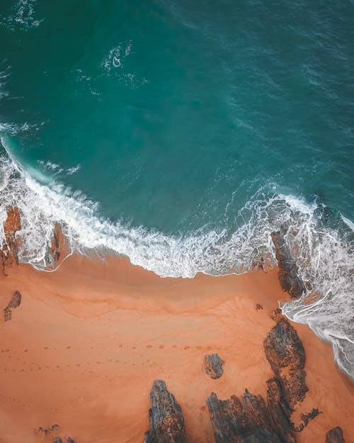 Безкоштовне стокове фото на тему «безтурботний, берег, берег моря»