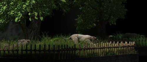 石のライオンの無料の写真素材