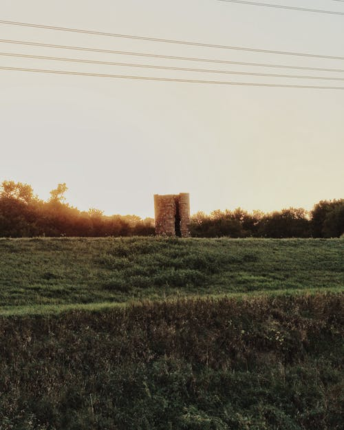 Free stock photo of abandoned, golden hour, nature
