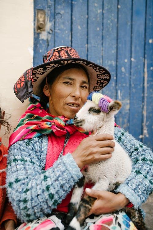 Femmina Peruviana Che Accarezza Baby Lama Nel Cortile Della Casa Invecchiata