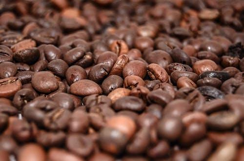 Безкоштовне стокове фото на тему «великий план, Кава, кавові зерна, коричневий»