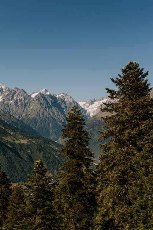 Picturesque scenery of lush coniferous woods growing among high rocky tops in highland valley