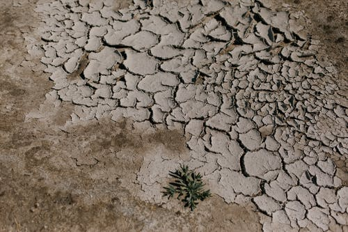 Cracked dry ground in desert area