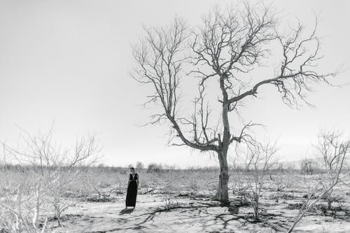 Woman standing in dry valley with leafless plants