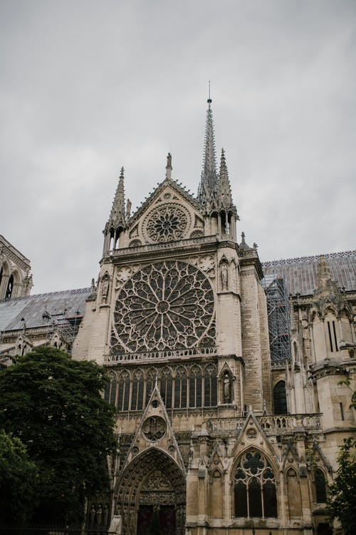 From below of aged stone Notre Dame de Paris church with ornamental facade with carved elements