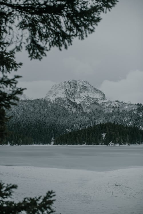 Snowy mountain top under conifer trees with frozen lake