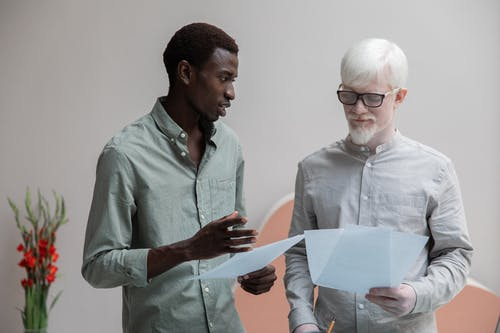 Concentrated African American man and albino coworker in eyeglasses working with papers while discussing work in contemporary office with flower