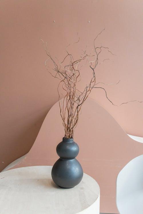 桌上有干燥植物的花瓶