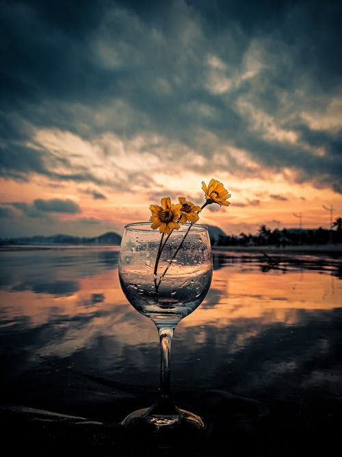 Close-Up Photo of Delicate Yellow Flowers in a Wine Glass