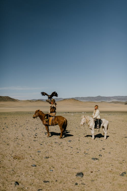 Side view of ethnic people in traditional clothes riding horses in dry sandy desert covered with pebbles