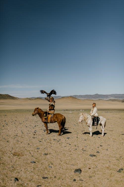 Ilmainen kuvapankkikuva tunnisteilla aavikko, aito, ajaa