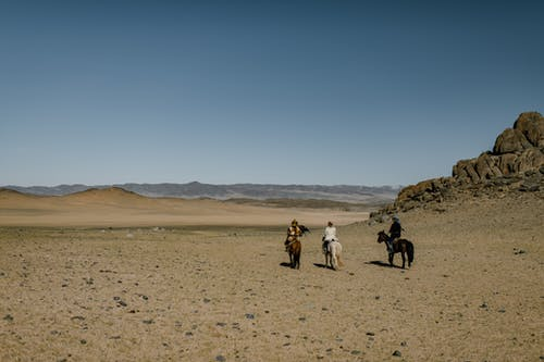 Back view anonymous equestrians riding horses on spacious hilly arid terrain under clear sky