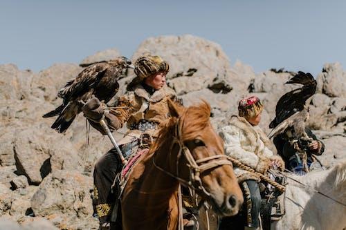 바위 지형을 타고 독수리와 몽골 기병