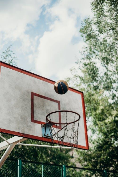Fotos de stock gratuitas de alto, anillo de baloncesto, aro