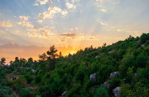 Free stock photo of background, beautiful sunset, clouds