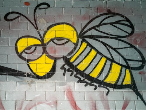Free stock photo of bee, flying insect, grafitti, honey