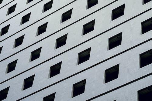 Imagine de stoc gratuită din afaceri, arhitect, arhitectură, arhitectural