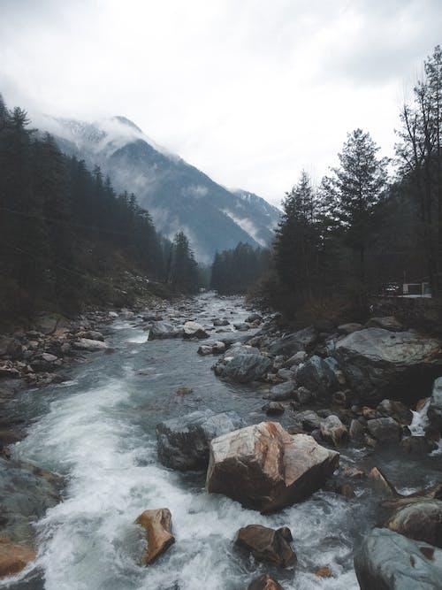 Fast river flowing through rocky terrain