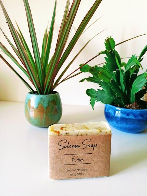 ahşap, aromaterapi, bitki örtüsü içeren Ücretsiz stok fotoğraf