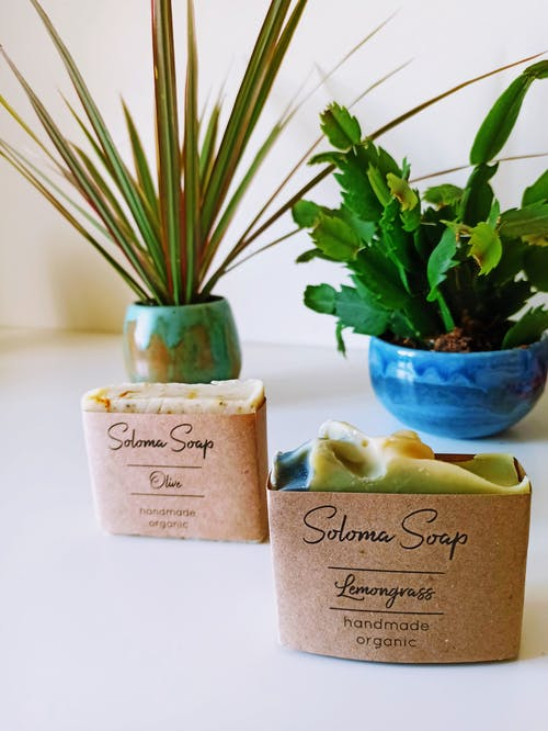 ahşap, aromaterapi, büyüme içeren Ücretsiz stok fotoğraf