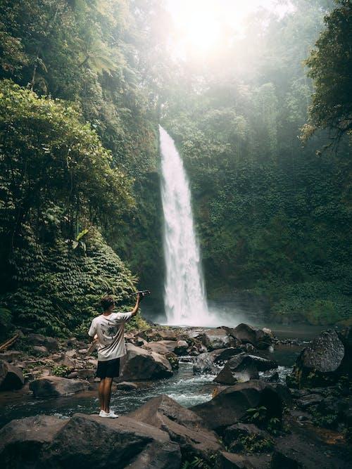 Immagine gratuita di acqua, albero, autunno, bali