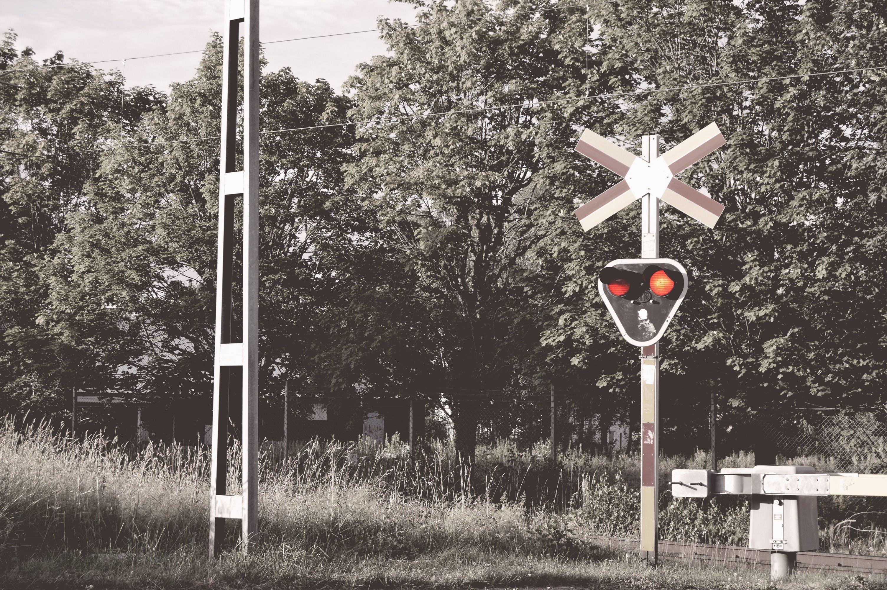 Free stock photo of light, nature, railway, sweden