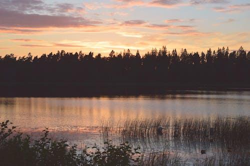 Free stock photo of beautiful, cloudy, evening