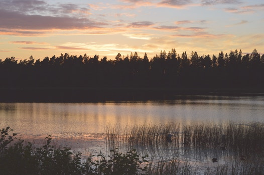 Free stock photo of nature, sunset, night, water