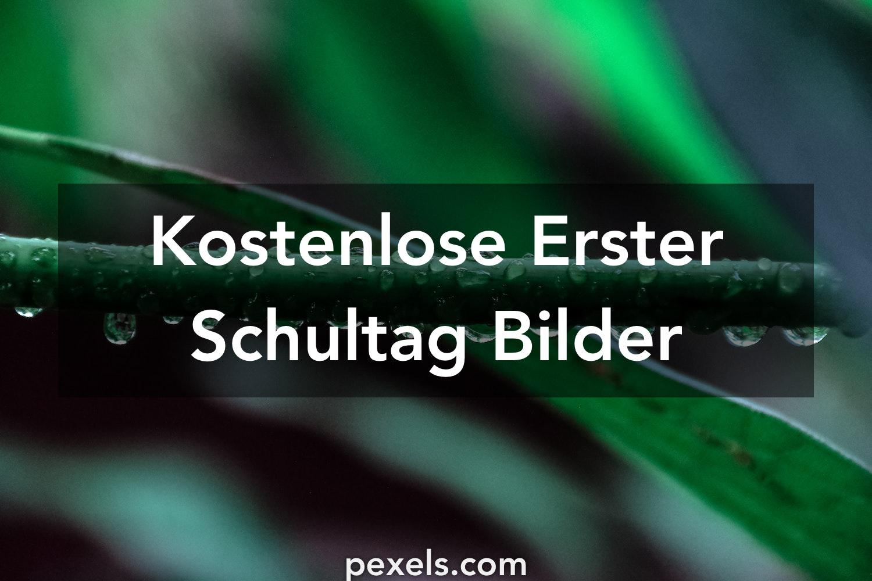 Charmant Malvorlagen Zum Ersten Schultag Bilder - Entry Level Resume ...