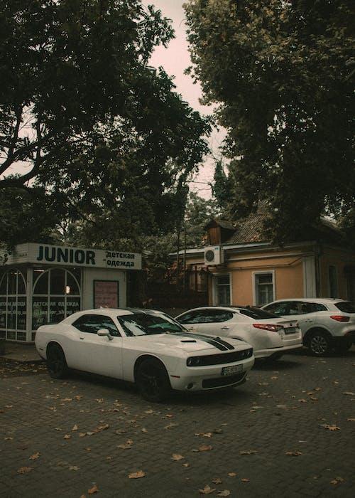 White Sedan Parked Beside White Sedan