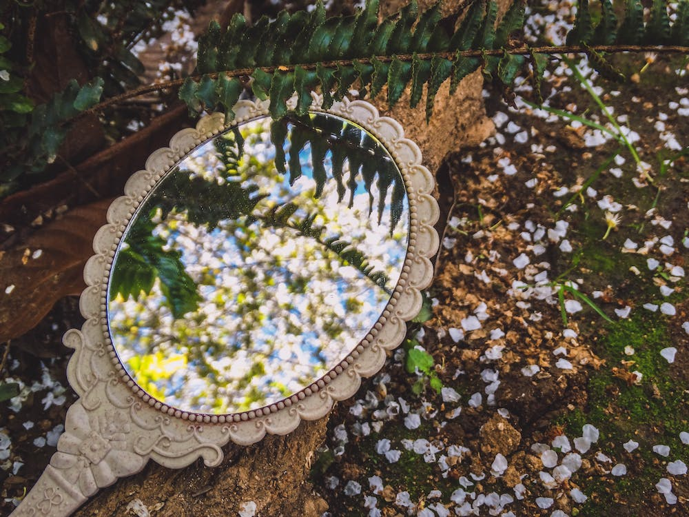 Round Mirror on Brown Dried Leaves