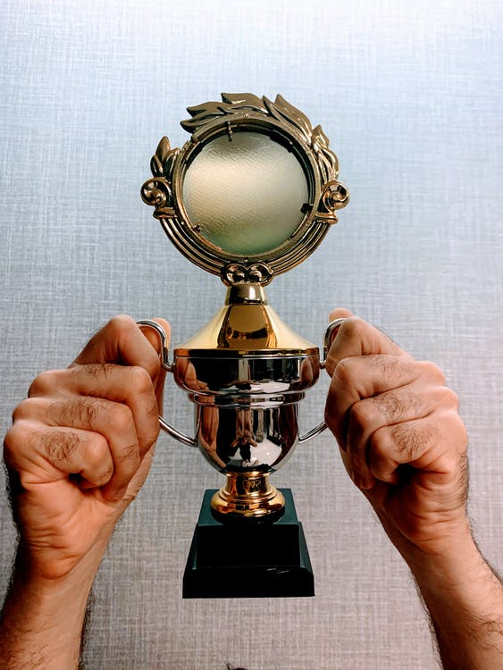 Gold and Black Trophy on Persons Hand