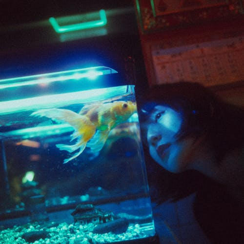 Thoughtful ethnic woman looking at aquarium fish