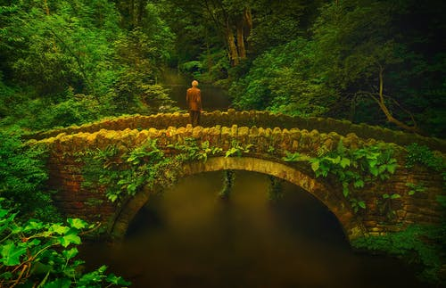 Man in Brown Coat Standing on Concrete Bridge in the Forest
