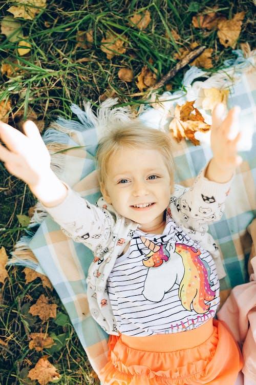 Kostenloses Stock Foto zu ahorn, baby, bäume