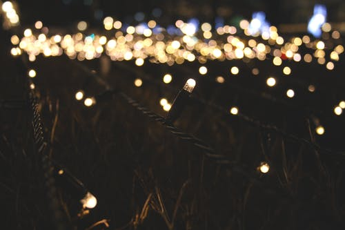 Ingyenes stockfotó éjszaka, fény, fókusz, foszforeszkáló témában