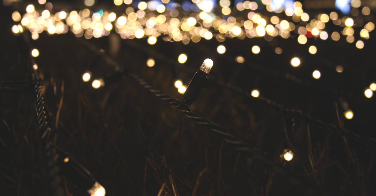 String Lights Photography : Lighted String Lights ? Free Stock Photo