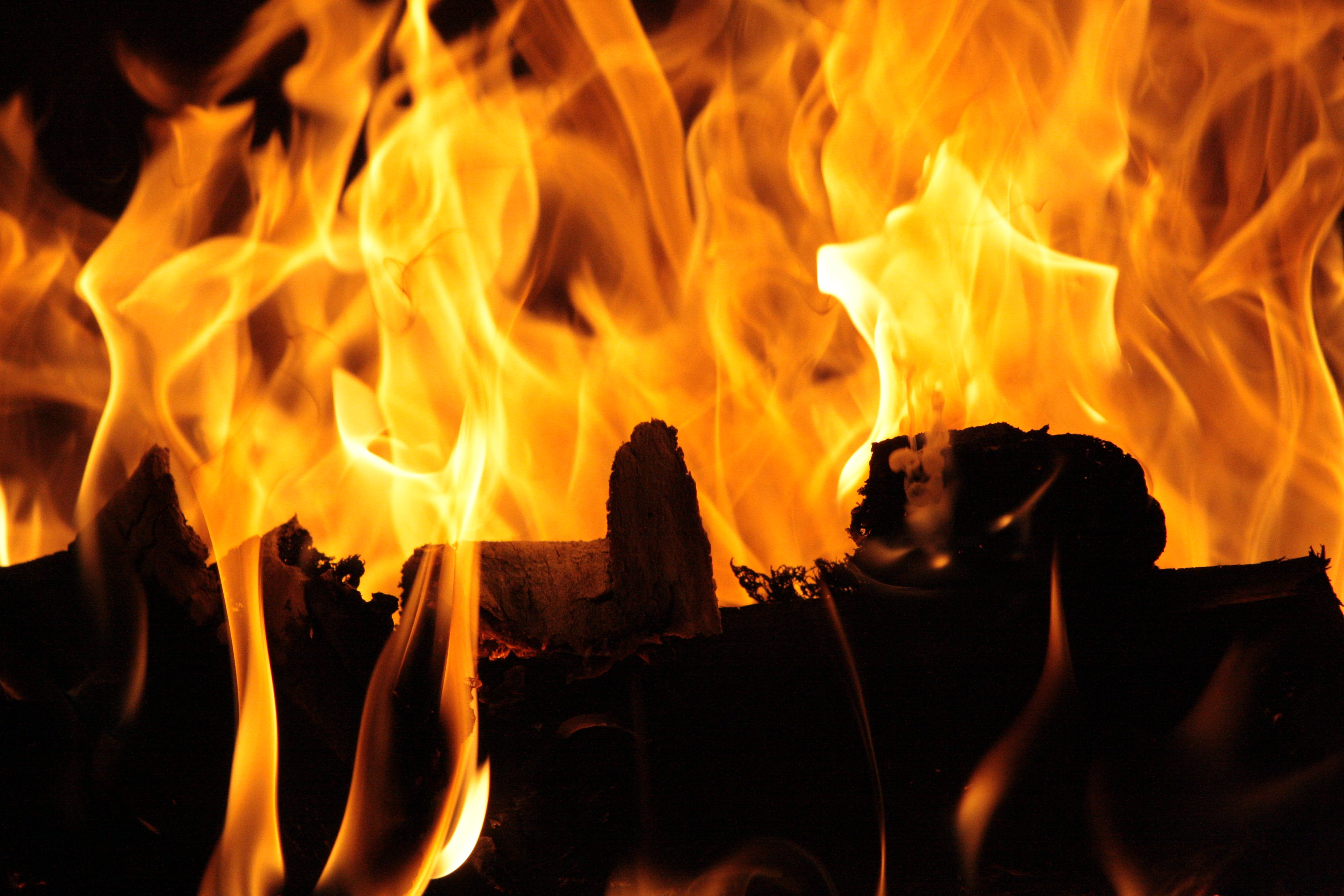 Free stock photo of #fire #flame