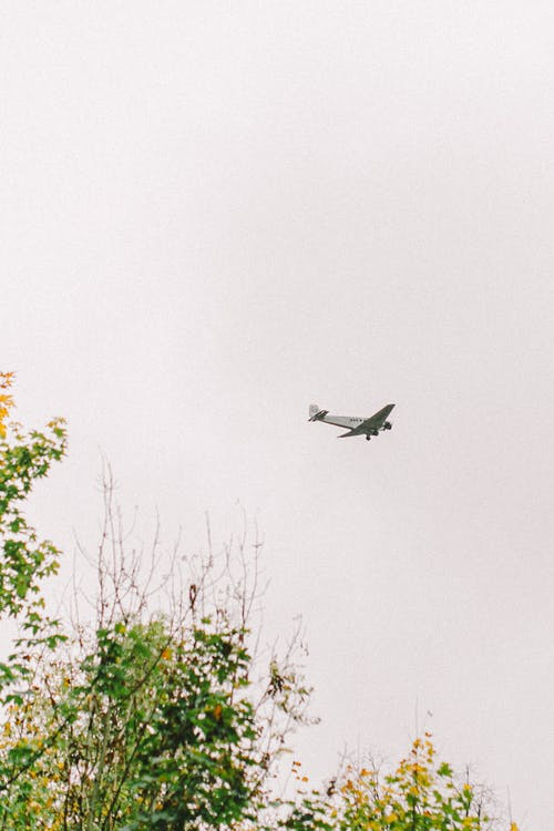 Black Airplane Flying over Green Trees