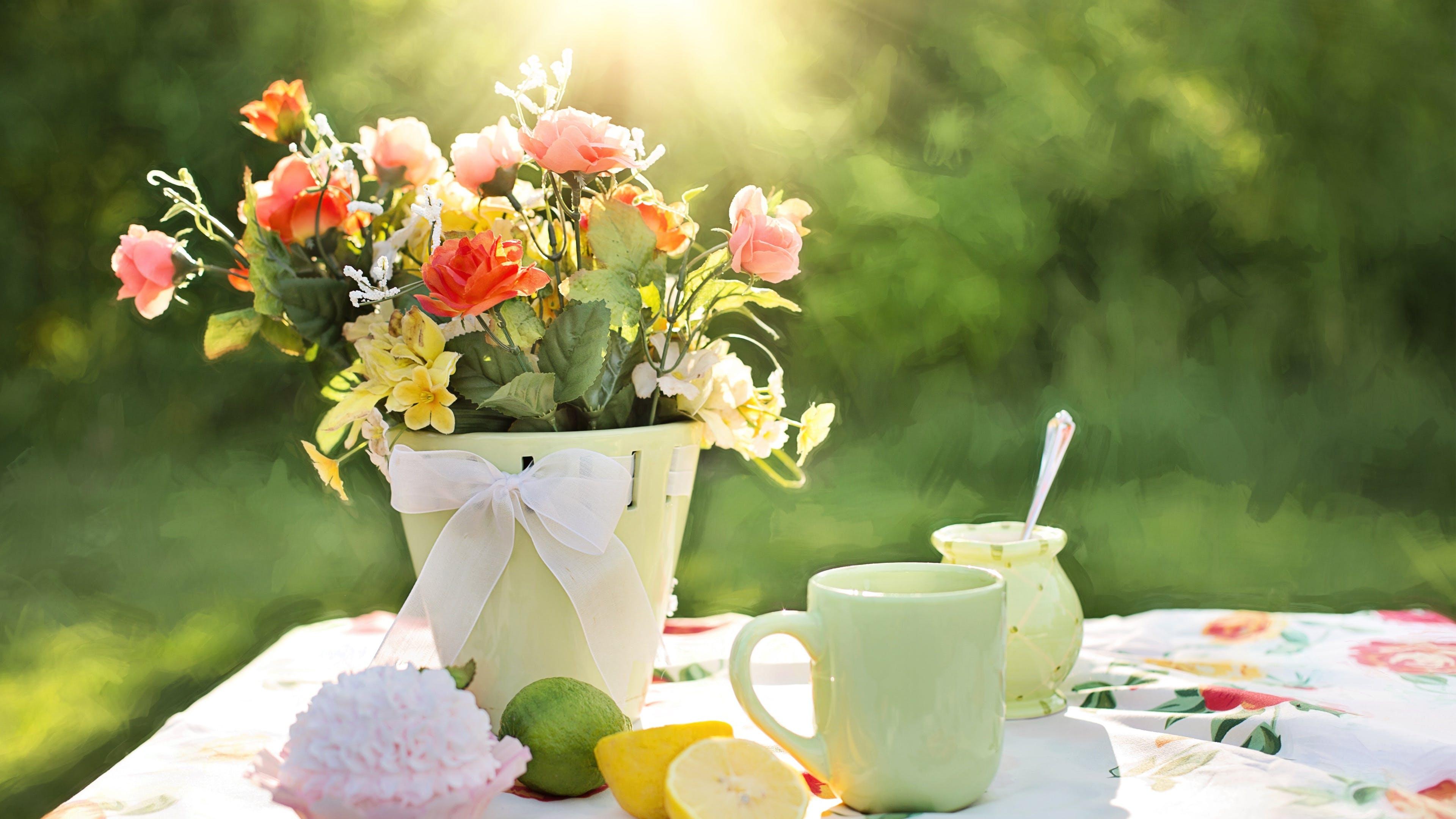 Kostenloses Stock Foto zu einmachglas, farbe, freude, kuchen