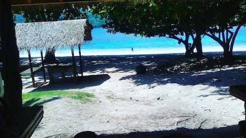 Δωρεάν στοκ φωτογραφιών με άμμος, αμμουδιά, γαλήνιος, δέντρα