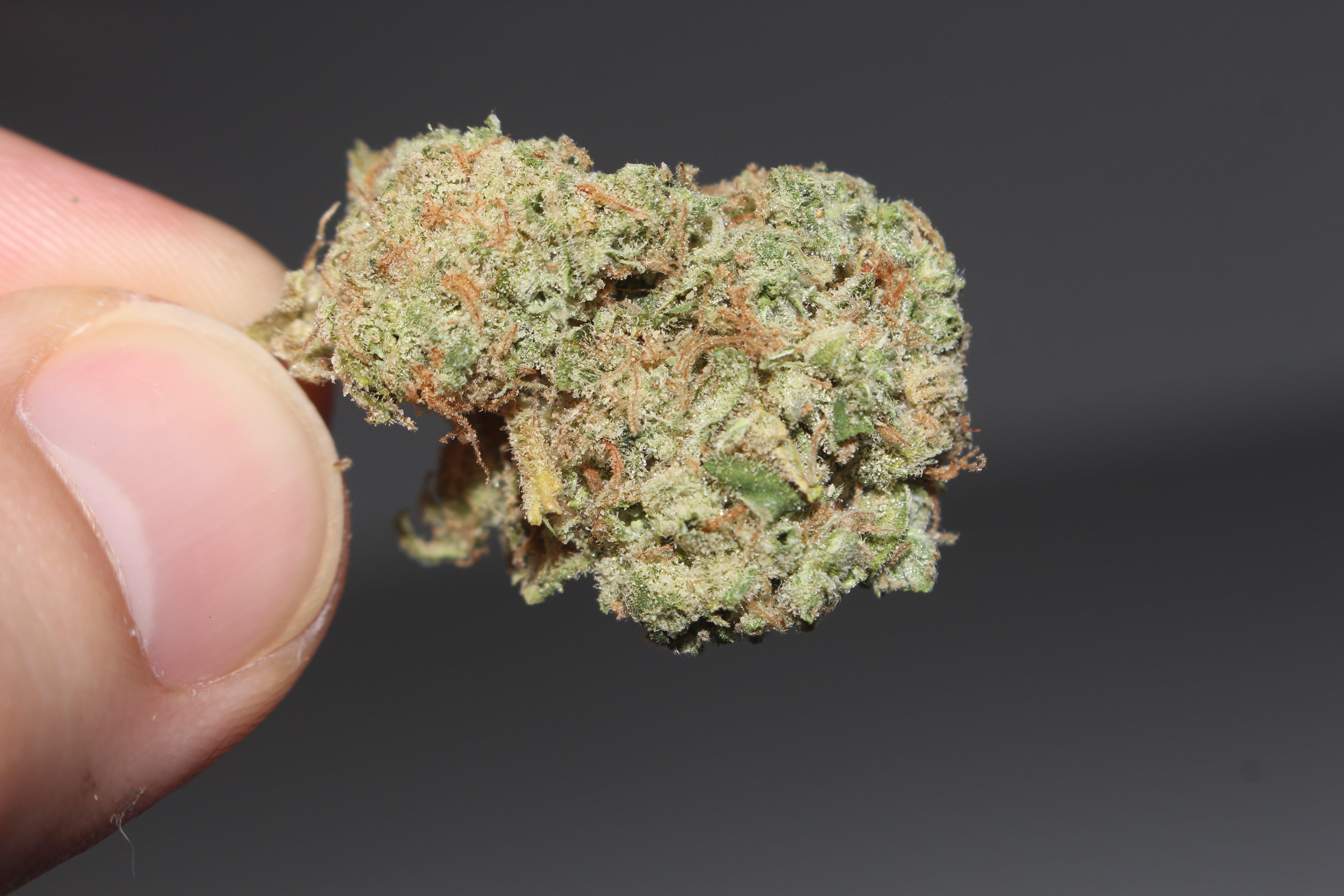 Лечебная марихуана видео картинки девушка в конопле