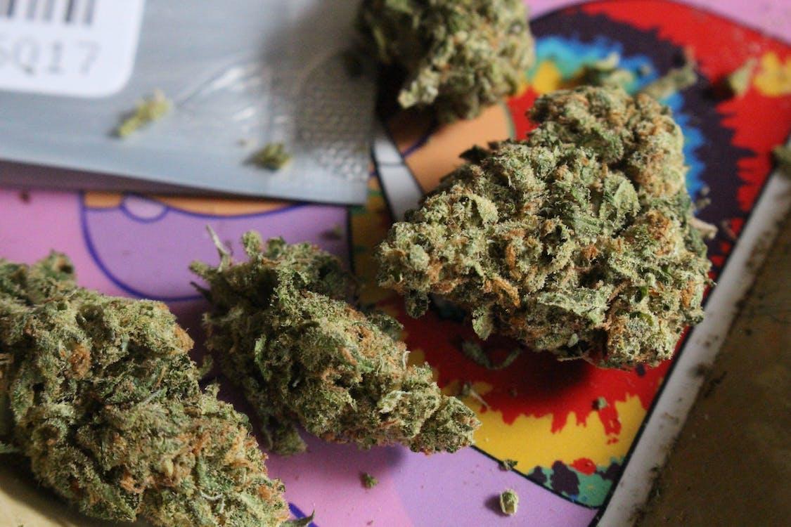 Kostenloses Stock Foto zu 420, belastung, cannabis