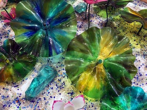 Free stock photo of art, beauty, colors