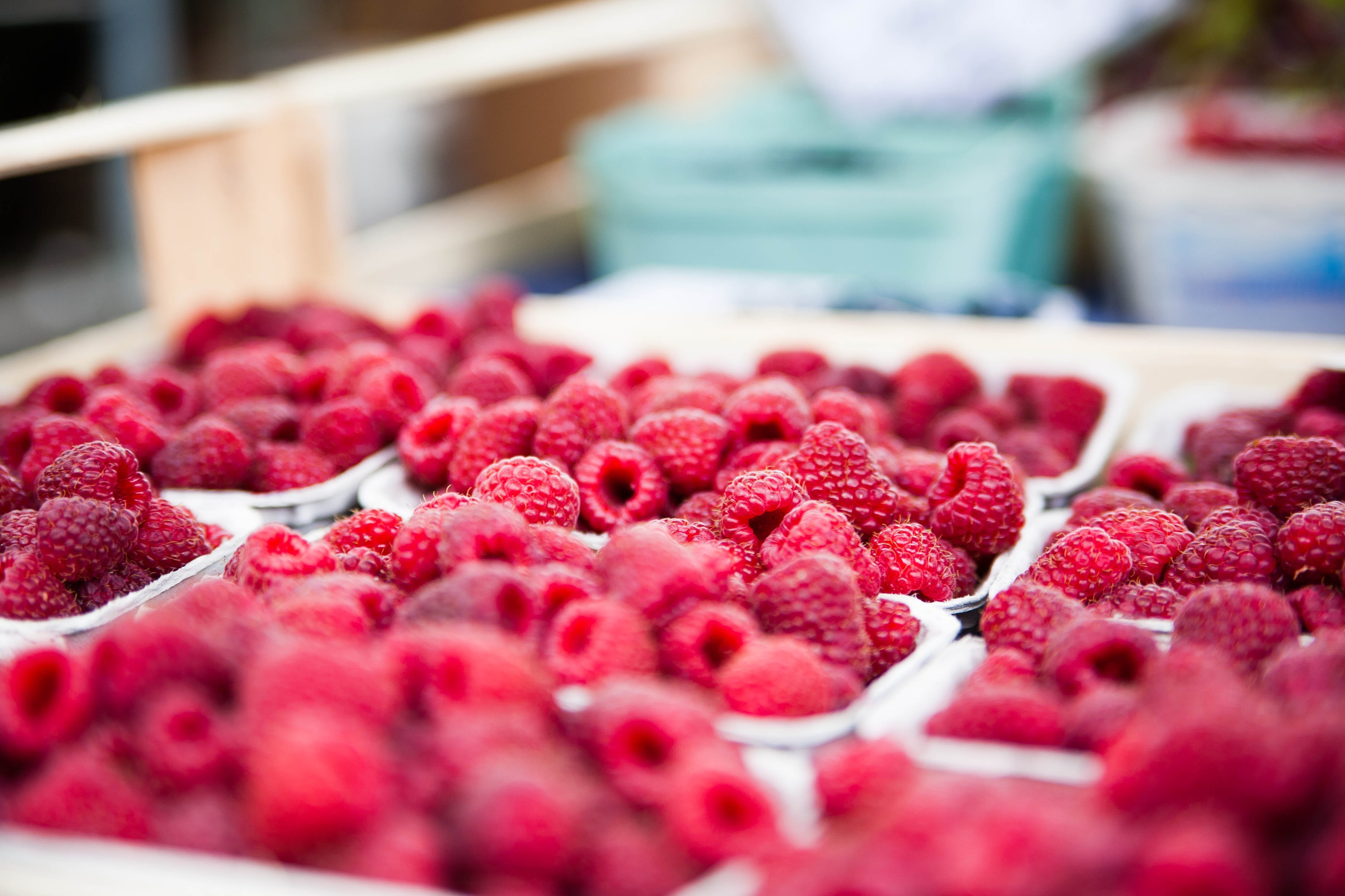 Red Raspberries on White Container