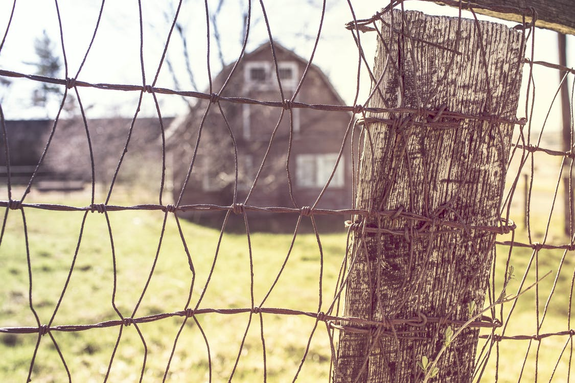 Gray Metal Wire Fence in Closeup Photography
