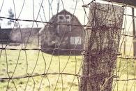 countryside, house, farm