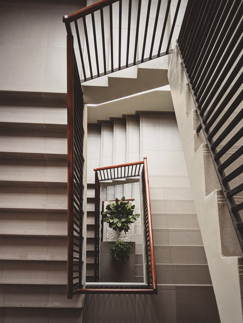 From above of stairway with wooden handrails in contemporary multistory apartment decorated with green plant